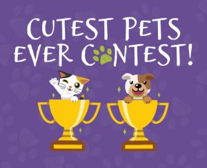 Cutest Pets Ever Contest